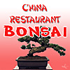 China Restaurant Bonsai